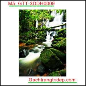 Gach-san-3D-Goldenstar-GTT-3DDH0009