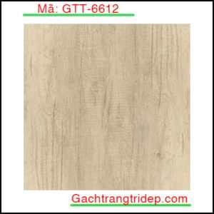 Gach-lat-nen-Indonesia-KT-600x600mm-GTT-6612