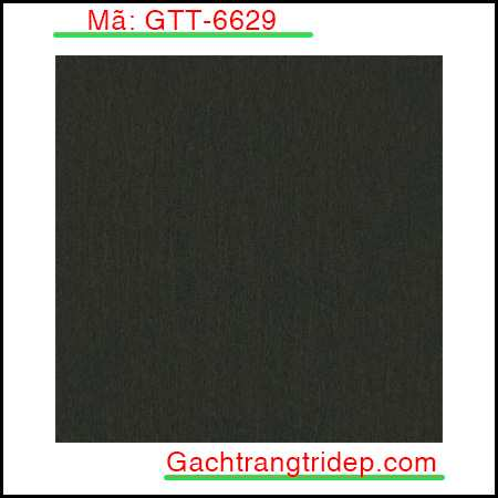Gach-lat-nen-Indonesia-KT-600x600mm-GTT-6629