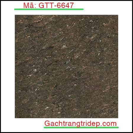 Gach-lat-nen-Indonesia-KT-600x600mm-GTT-6647