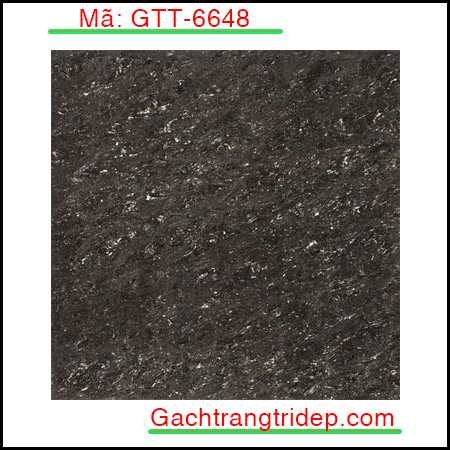 Gach-lat-nen-Indonesia-KT-600x600mm-GTT-6648