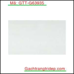 Gach-op-lat-Taicera-KT-300x600mm-GTT-G63935