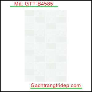 Gach-op-tuong-Viglacera-KT-300x450mm-GTT-B4585