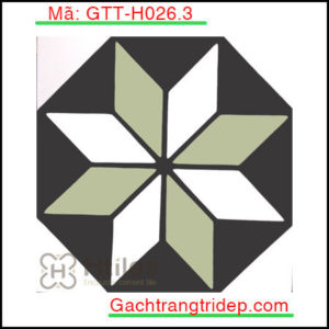 Gach-bong-trang-tri-KT-20x20cm-GTT-H026.3