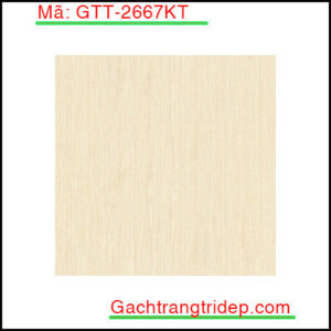 Gach-lat-san-Prime-KT-600x600mm-GTT-2667KT