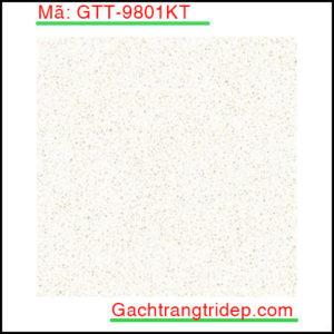 Gach-lat-san-Prime-KT-600x600mm-GTT-9801KT