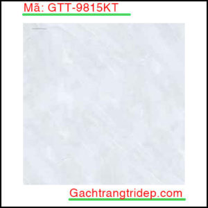 Gach-lat-san-Prime-KT-600x600mm-GTT-9815KT