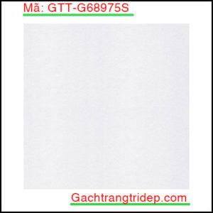 Gach-lat-san-Taicera-KT-600x600mm-GTT-G68975S