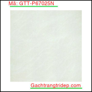 Gach-lat-san-Taicera-KT-600x600mm-GTT-P67025N