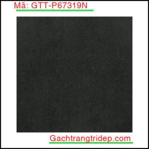 Gach-lat-san-Taicera-KT-600x600mm-GTT-P67319N