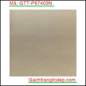 Gach-lat-san-Taicera-KT-600x600mm-GTT-P67403N