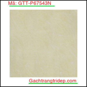 Gach-lat-san-Taicera-KT-600x600mm-GTT-P67543N