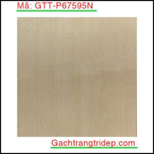 Gach-lat-san-Taicera-KT-600x600mm-GTT-P67595N