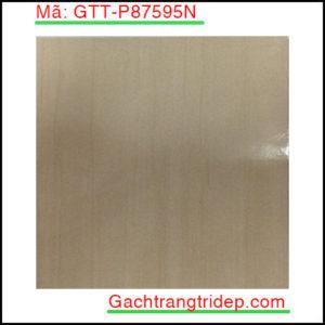 Gach-lat-san-Taicera-KT-600x600mm-GTT-P87595N