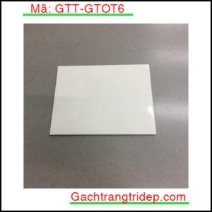 Gach-the-nhap-khau-op-tuong-KT-20x20cm-GTT-GTOT6