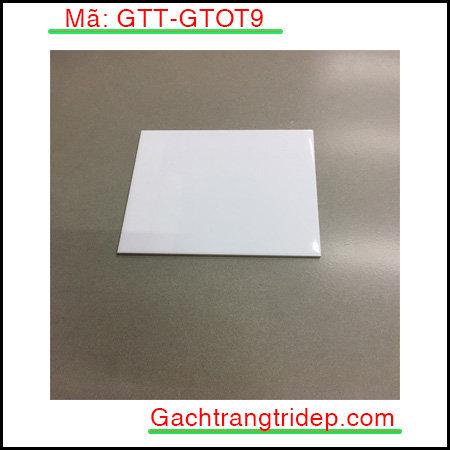 Gach-the-nhap-khau-op-tuong-KT-20x20cm-GTT-GTOT9