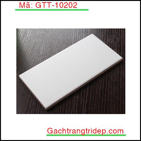 Gach-the-nhap-khau-trang-tri-mau-trang-phang-bong-KT-100x200mm-GTT-10202