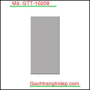 Gach-the-nhap-khau-trang-tri-mau-xam-phang-bong-KT-100x200mm-GTT-10208