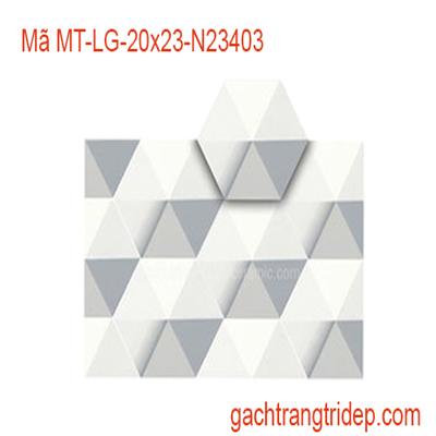 gach-luc-giac-MT-LG-20X23-N23403
